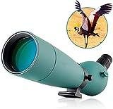 KAUTO mit Fotoadapter (2,20-60x80 Zoom Wasserdichtes Spektiv, Monokular für Vogelbeobachtung Zielschießen Bogenschießen Outdoor-Aktivitäten - -60x80)