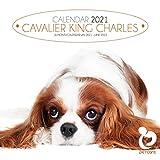 Cavalier King Charles 2021 30,5 x 30,5 cm, quadratischer Tierpflege-Hunde-Kalender mit gratis 6-Monatsplaner für 2022, das perfekte Weihnachts- oder Geburtstagsgeschenk