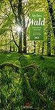 Mythos Wald Kalender 2022, Wandkalender im Hochformat (33x66 cm) - Naturkalender / Literaturkalender mit Z