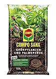 COMPO SANA Grünpflanzen- und Palmenerde mit 12 Wochen Dünger für alle Zimmer- und Balkonpflanzen sowie Palmen und Farne, Kultursubstrat, 10 L