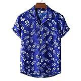 Shirt Herren Sommer Atmungsaktiv Cool Regular Fit Herren Kurzarm Strand Urlaub Casual Herren Hawaii Hemd Schwimmen Surf Herren Freizeithemden A-XH34 3XL