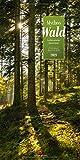 Mythos Wald Kalender 2021, Wandkalender im Hochformat (33x66 cm) - Naturkalender / Literaturkalender mit Z