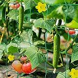 HUTHIM Ranknetz Rankhilfe Garten Tomaten Gurken 2x2.5m, Großer Rastergröße Sehr Passend Netz für Kletterpflanzen Gewächshaus Zubehör, mit 18Pflanzenclips 12Pflanzenbindern 20m L